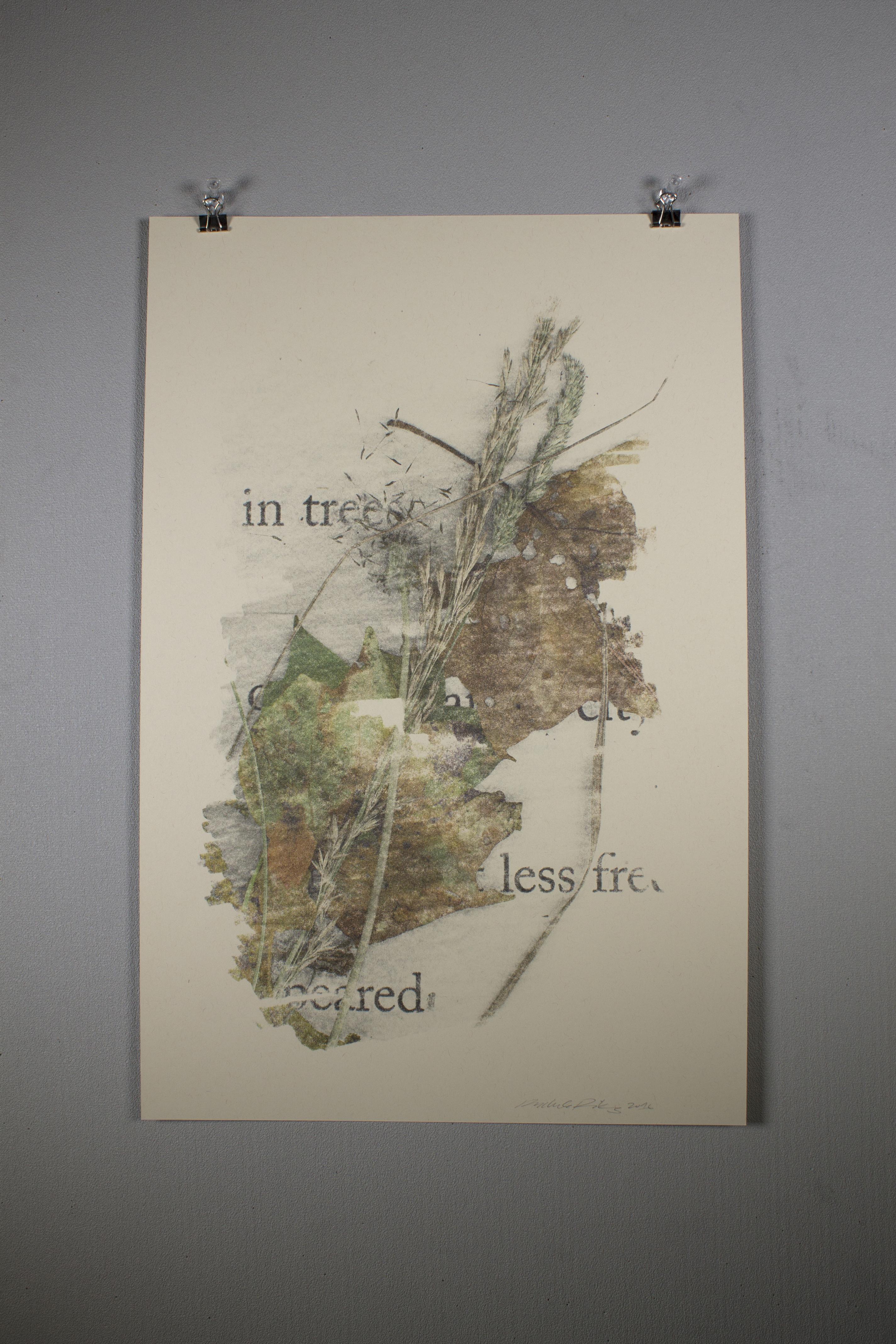 IMG_1909_edit